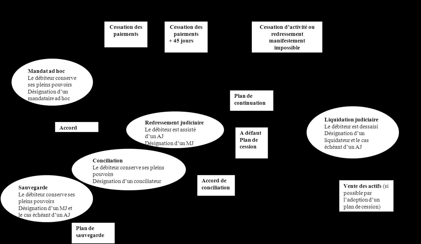 schéma-articulation-des-procédures